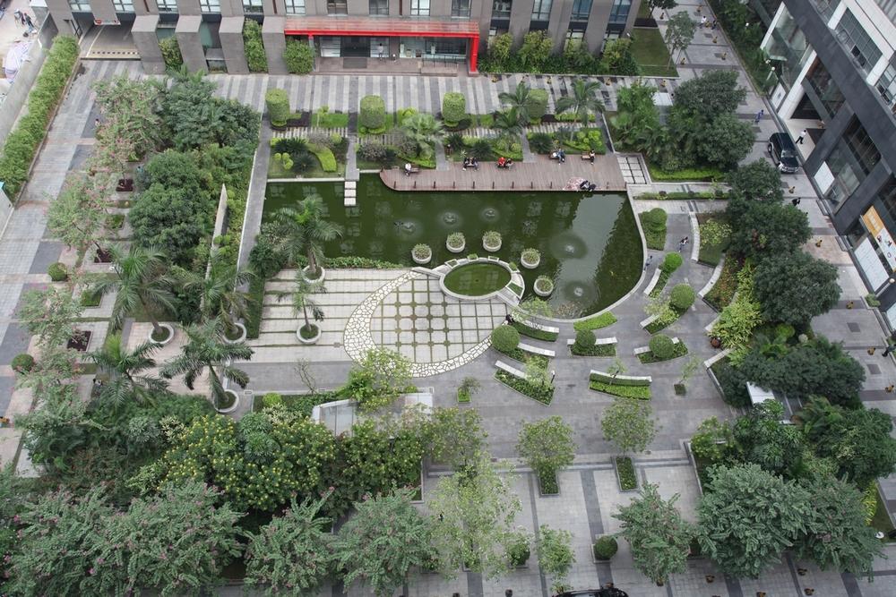 信息港花园.jpg